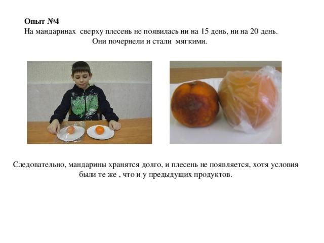 Опыт №4 На мандаринах сверху плесень не появилась ни на 15 день, ни на 20 день. Они почернели и стали мягкими. Следовательно, мандарины хранятся долго, и плесень не появляется, хотя условия были те же , что и у предыдущих продуктов.