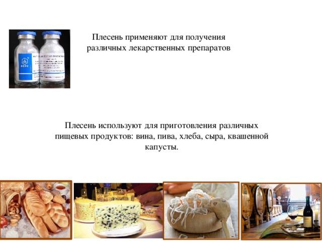 Плесень используют для приготовления различных пищевых продуктов: вина, пива, хлеба, сыра, квашенной капусты. Плесень применяют для получения различных лекарственных препаратов