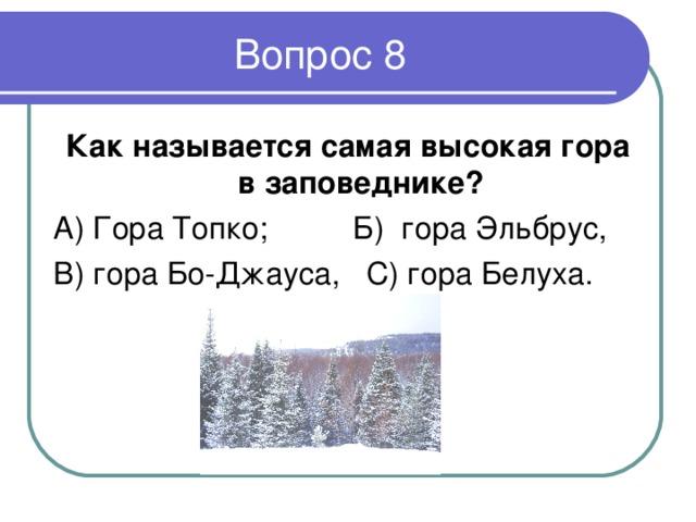 Как называется самая высокая гора в заповеднике ? А ) Гора Топко; Б) гора Эльбрус, В) гора Бо-Джауса, С) гора Белуха.