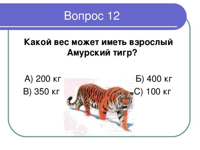 Какой вес может иметь взрослый Амурский тигр ?  А) 200 кг Б) 400 кг В) 350 кг С) 100 кг
