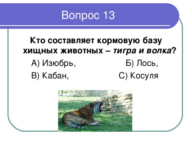 Кто составляет кормовую базу хищных животных – тигра  и волка ? А) Изюбрь, Б) Лось, В) Кабан, С) Косуля