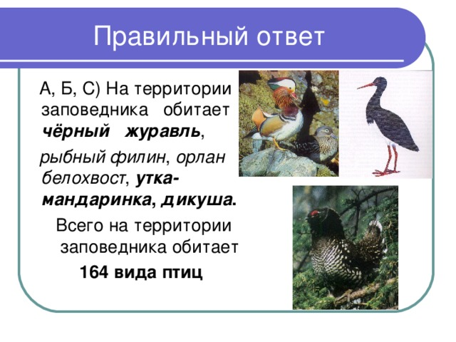 А, Б, С) На территории заповедника  обитает чёрный  журавль ,  рыбный филин , орлан белохвост , утка-мандаринка , дикуша . Всего на территории заповедника обитает 164 вида птиц