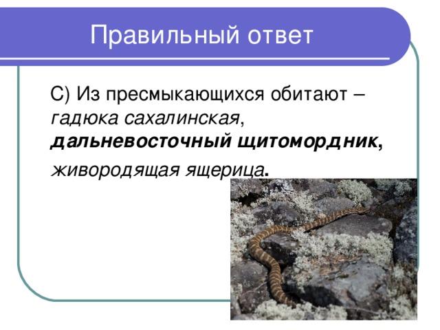 гадюка сахалинская дальневосточный щитомордник , живородящая ящерица .