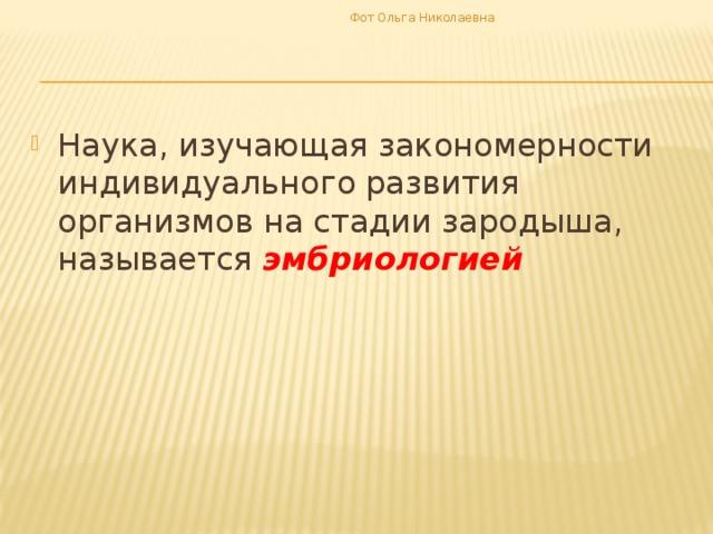 Фот Ольга Николаевна
