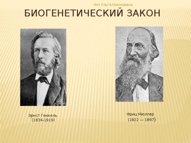 Фот Ольга Николаевна БИОГЕНЕТИЧЕСКИЙ ЗАКОН Фриц Мюллер  (1822 — 1897 ) Эрнст Геккель (1834-1919)