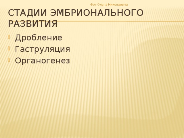 Фот Ольга Николаевна Стадии эмбрионального развития