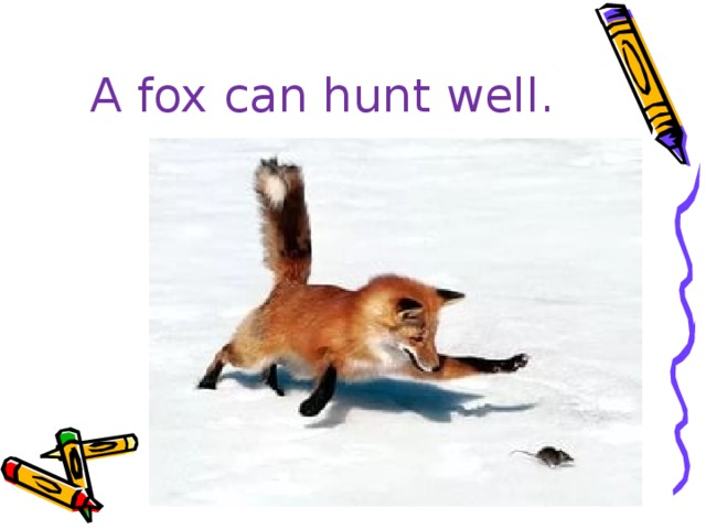 A fox can hunt well.