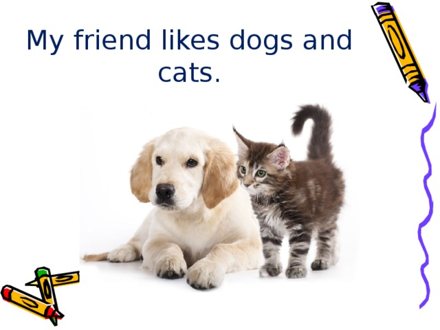 My friend likes dogs and cats.