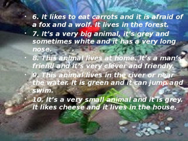 6. It likes to eat carrots and it is afraid of a fox and a wolf. It lives in the forest. 7. It's a very big animal, it's grey and sometimes white and it has a very long nose. 8. This animal lives at home. It's a man's friend and it's very clever and friendly. 9. This animal lives in the river or near the water. It is green and it can jump and swim. 10. It's a very small animal and it is grey. It likes cheese and it lives in the house.