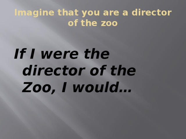 Imagine that you are a director of the zoo If I were the director of the Zoo, I would…