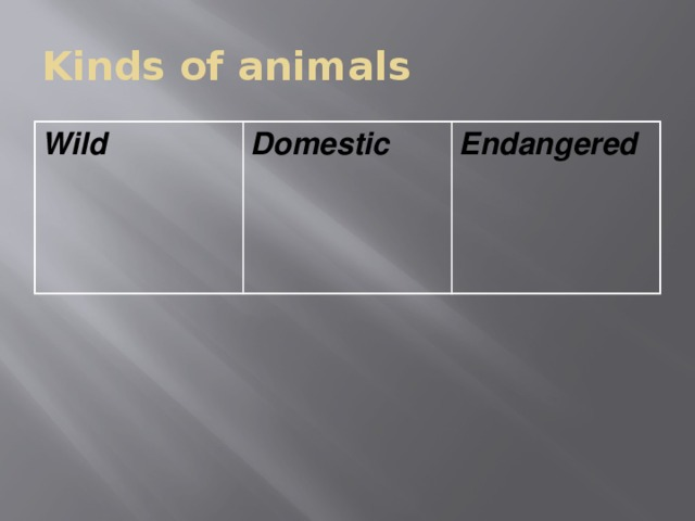 Kinds of animals Wild  Domestic  Endangered