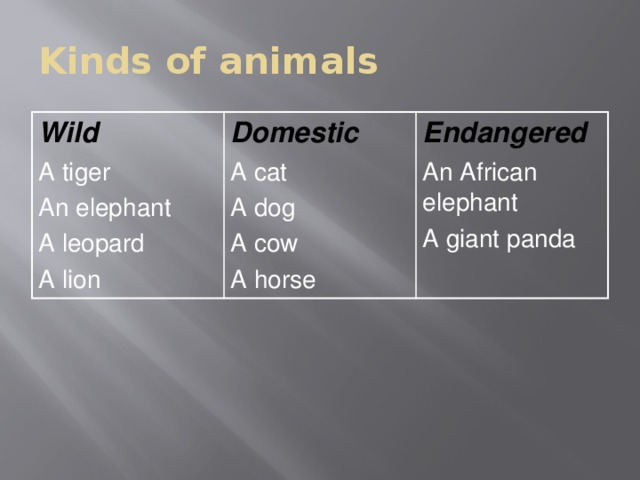 Kinds of animals Wild A tiger Domestic A cat An elephant Endangered A leopard A dog An African elephant A cow A lion A giant panda A horse