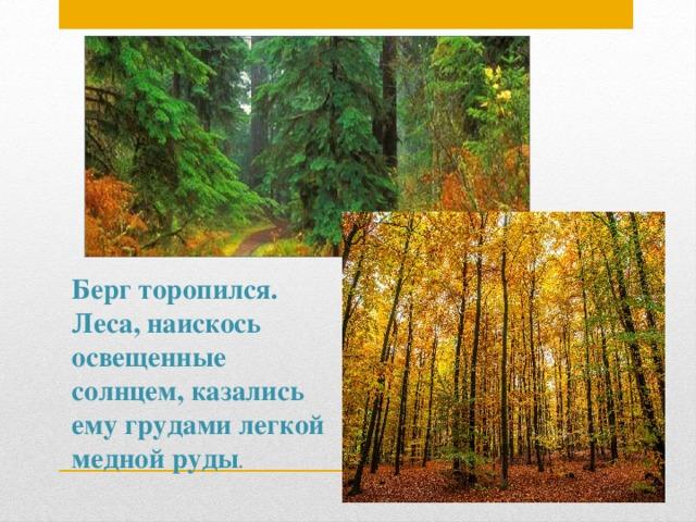 Берг торопился. Леса, наискось освещенные солнцем, казались ему грудами легкой медной руды .