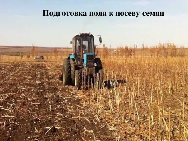 Подготовка поля к посеву семян