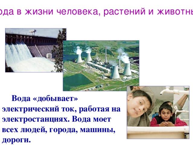 Вода в жизни человека, растений и животных  Вода «добывает» электрический ток, работая на электростанциях. Вода моет всех людей, города, машины, дороги.
