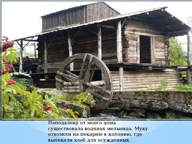 Неподалеку от моего дома существовала водяная мельница. Муку отвозили на пекарню в колонию, где выпекали хлеб для осужденных.