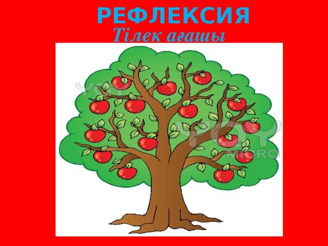 РЕФЛЕКСИЯ Тілек ағашы