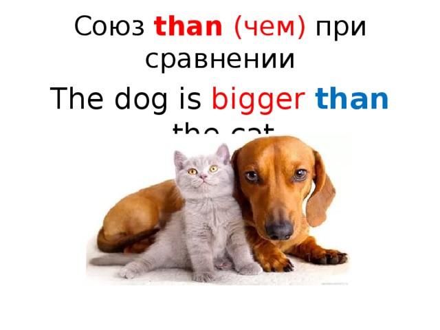 Союз than (чем) при сравнении The dog is bigger  than the cat.