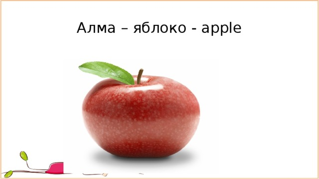 Алма – яблоко - apple