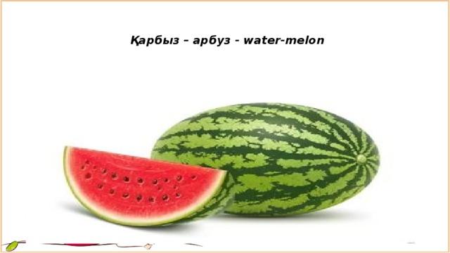 Қарбыз – арбуз - water-melon