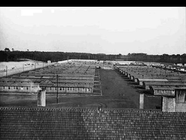 Группы заключённых    По имеющейся информации, в лагере среди прочих содержались представители секс-меньшинств. В период с начала существования концлагеря до 1943 года в лагере погибли 600 носителейрозового винкеля. С 1943 года гомосексуалы работали в основном в лагерном госпитале в качестве докторов или сиделок. После войны большая часть выживших узников нетрадиционной ориентации не смогли получить от немецкого правительства компенсаций.