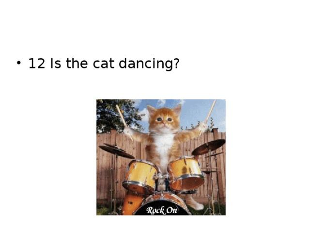 12 Is the cat dancing?