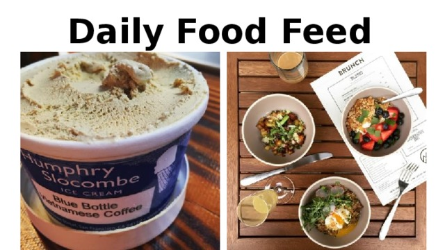 Daily Food Feed