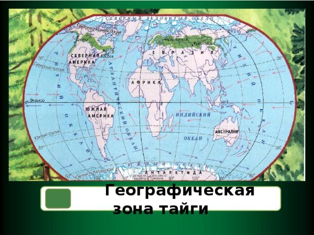 Географическая зона тайги