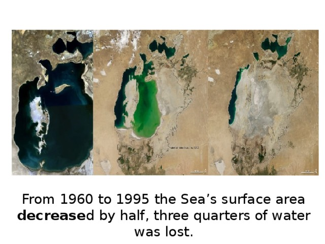 From 1960 to 1995 the Sea's surface area decrease d by half, three quarters of water was lost.