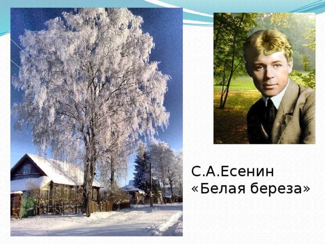 С.А.Есенин «Белая береза»