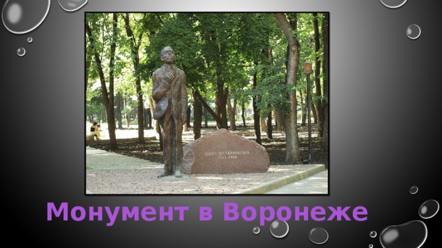 Монумент в Воронеже