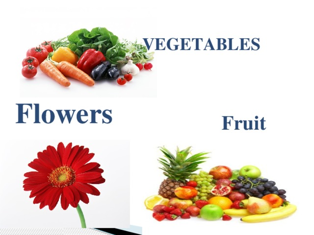 VEGETABLES   Flowers Fruit