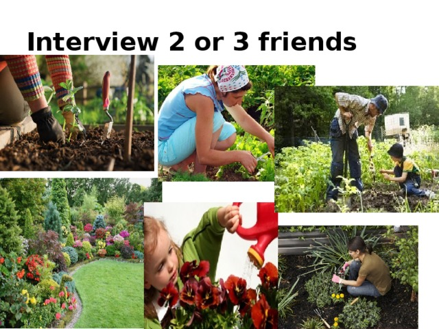 Interview 2 or 3 friends
