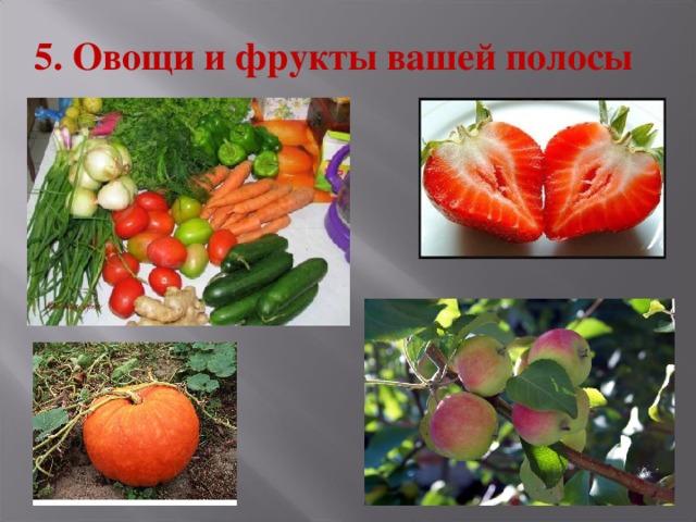 5. Овощи и фрукты вашей полосы
