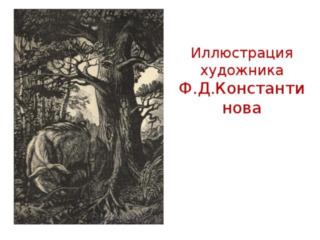 Иллюстрация художника Ф.Д.Константинова