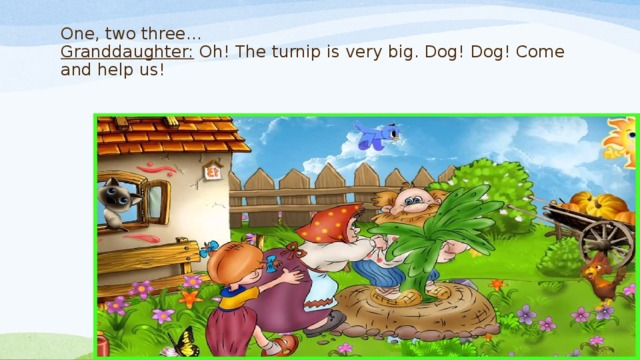 One, two three…  Granddaughter: Oh! The turnip is very big. Dog! Dog! Come and help us!