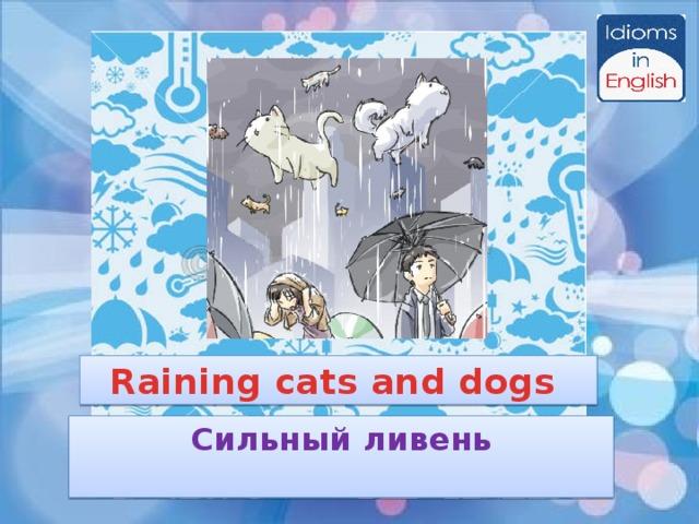 Raining cats and dogs Сильный ливень