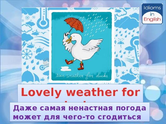 Lovely weather for ducks Даже самая ненастная погода может для чего-то сгодиться