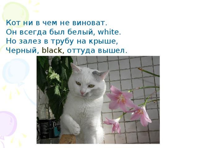 Кот ни в чем не виноват.  Он всегда был белый, white.  Но залез в трубу на крыше,  Черный, black, оттуда вышел .