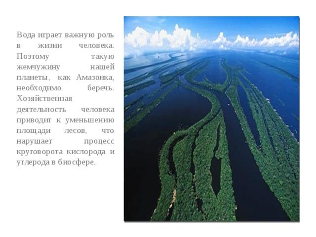 Вода играет важную роль в жизни человека. Поэтому такую жемчужину нашей планеты, как Амазонка, необходимо беречь. Хозяйственная деятельность человека приводит к уменьшению площади лесов, что нарушает процесс круговорота кислорода и углерода в биосфере.