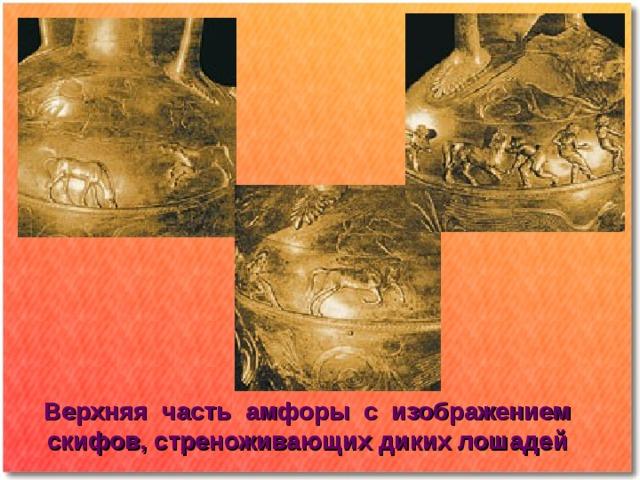 Верхняя часть амфоры с изображением скифов, стреноживающих диких лошадей