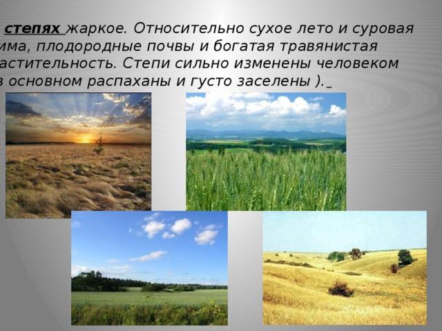 В степях жаркое. Относительно сухое лето и суровая зима, плодородные почвы и богатая травянистая растительность. Степи сильно изменены человеком (в основном распаханы и густо заселены ).  ж