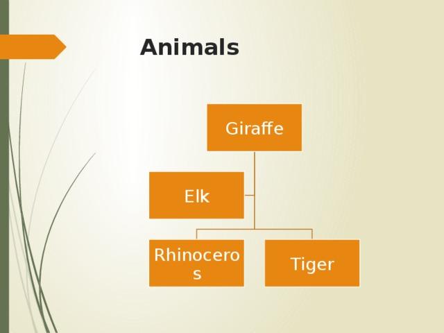 Animals Giraffe Elk Rhinoceros Tiger