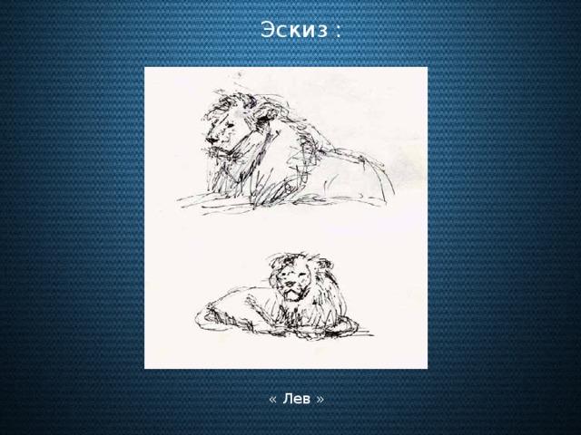 Эскиз : « Лев »