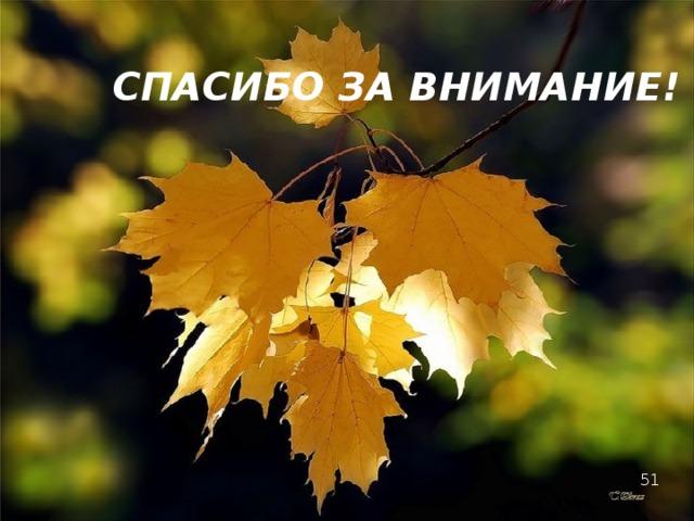 СПАСИБО ЗА ВНИМАНИЕ! 51