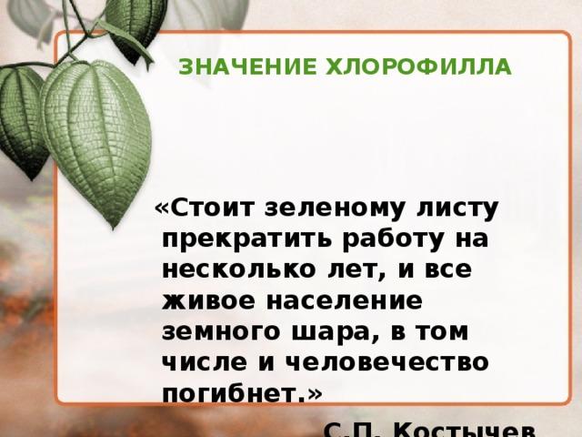 ЗНАЧЕНИЕ ХЛОРОФИЛЛА  «Стоит зеленому листу прекратить работу на несколько лет, и все живое население земного шара, в том числе и человечество погибнет.» С.П. Костычев