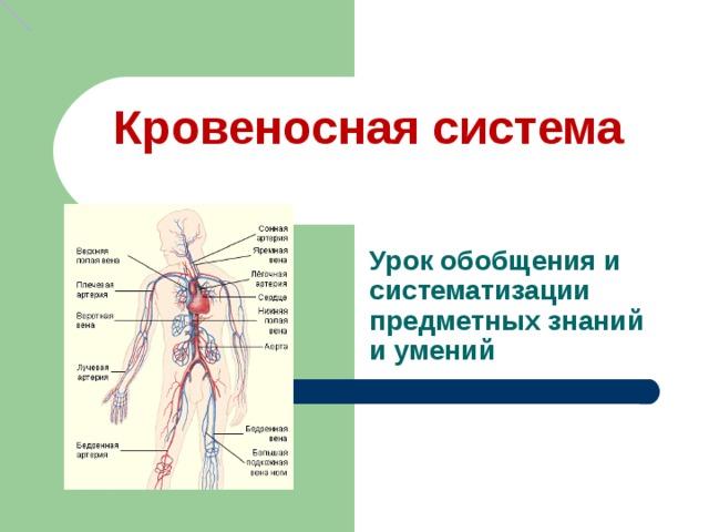 Кровеносная система Урок обобщения и систематизации предметных знаний и умений