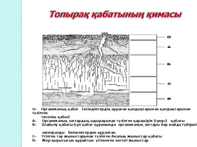 О- Органикалық қабат (өсімдіктердің қураған қалдықтарынан қалдықтарынан түзілген  төсеніш қабат) А- Органикалық заттардың ыдырауынан түзілген қарашірік (гумус) қабаты В- Шайылу қабаты.Бұл қабат құрамында органикалық заттары бар майда түйіршікті  минералды бөлшектерден құралған. С- Үгілген тау жыныстарынан түзілген Аналық жыныстар қабаты R- Жер қырытысын құрайтын үгілмеген негізгі жыныстар