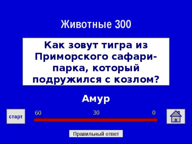 Животные 300 Как зовут тигра из Приморского сафари-парка, который подружился с козлом? Амур 0 30 60 старт Правильный ответ