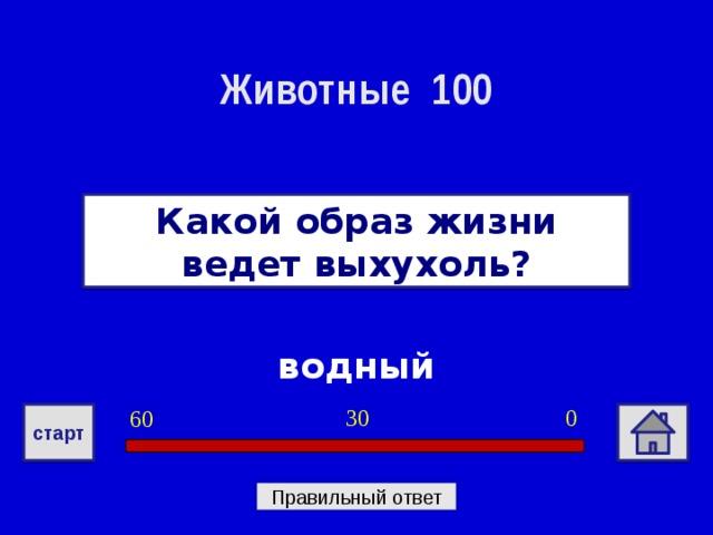 Животные 100 Какой образ жизни ведет выхухоль? водный 0 30 60 старт Правильный ответ